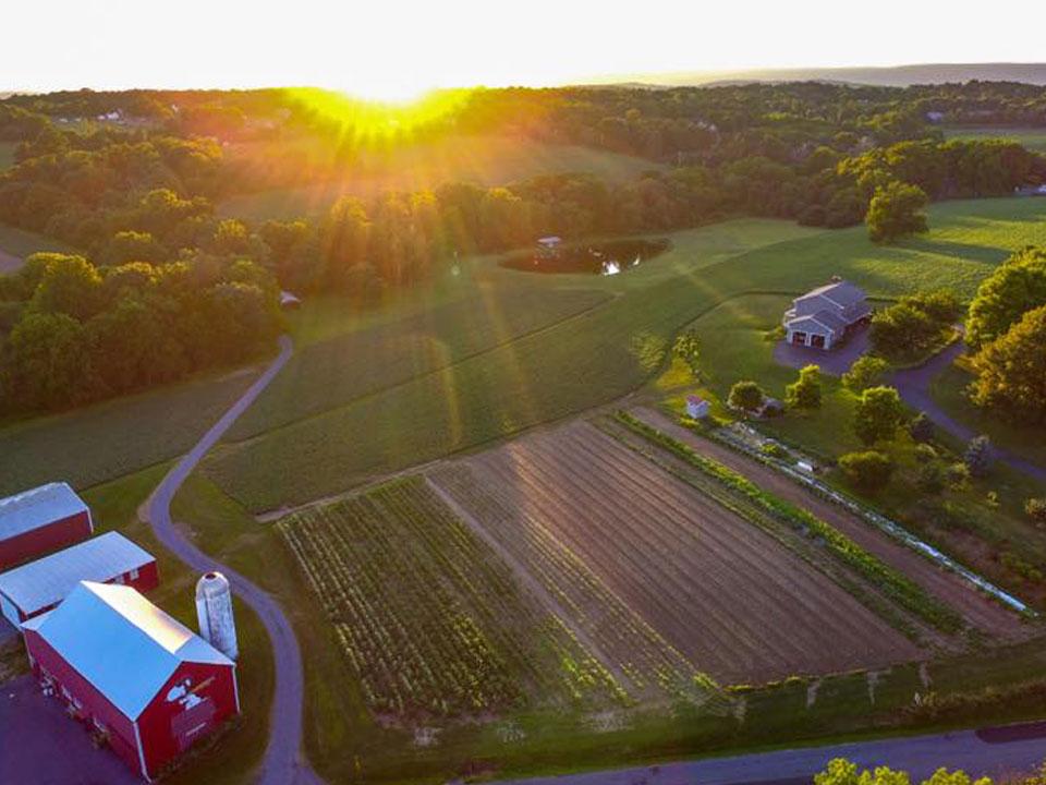 Regier Family Farm