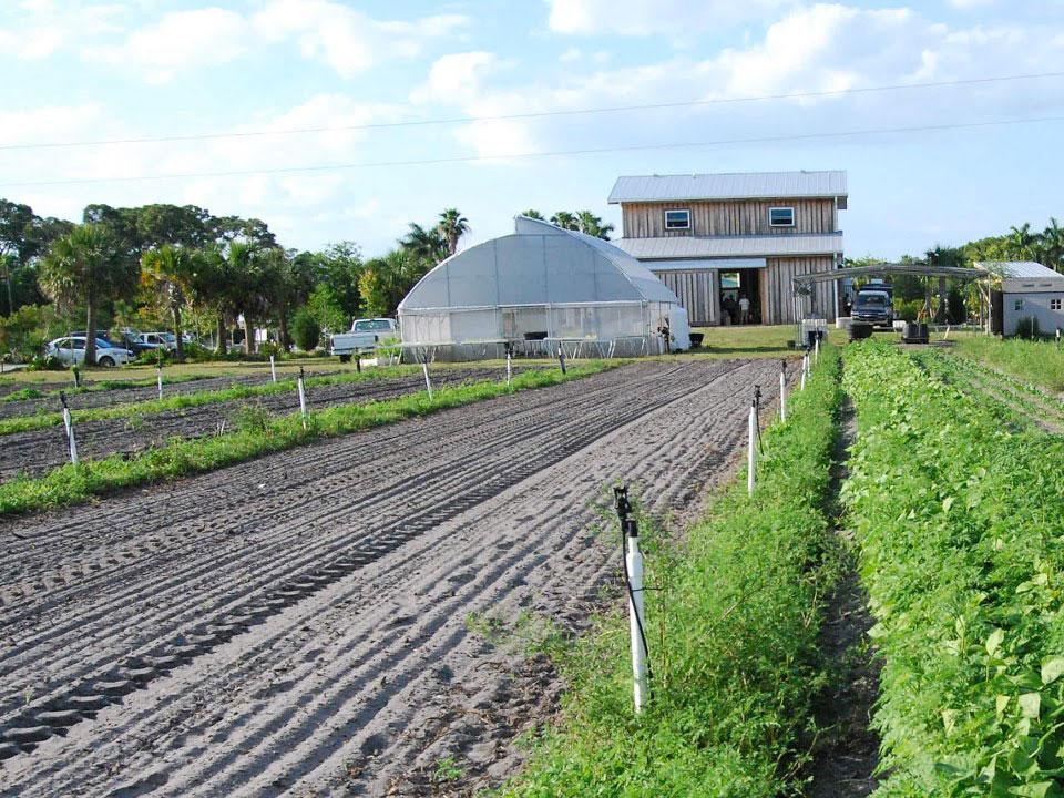Costal Organic Farm