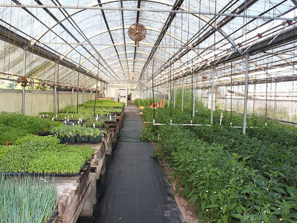 Milliken Family Farms